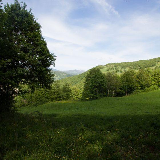 Alta Valmarecchia - panorama (7)