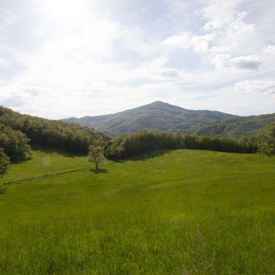 Alta Valmarecchia - panorama (3)