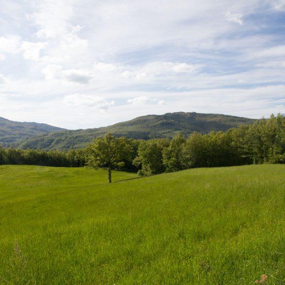 Alta Valmarecchia