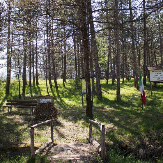 Parco della memoria - Badia Tedalda (2)