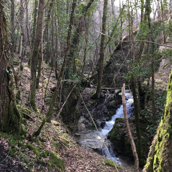 Auro - Sentiero delle Cannuccie