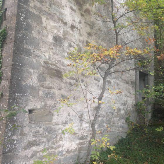 Castello di Castellacciola (resti)