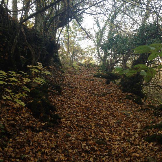 Sentiero delle Cannucce nella Valle dell'Auro